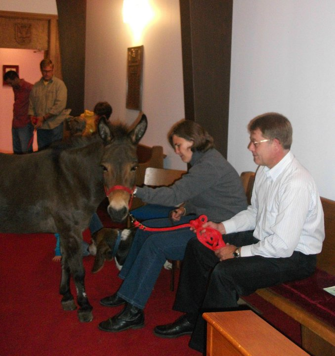 2010_blessing_of_the_animals_20101009_1299977137